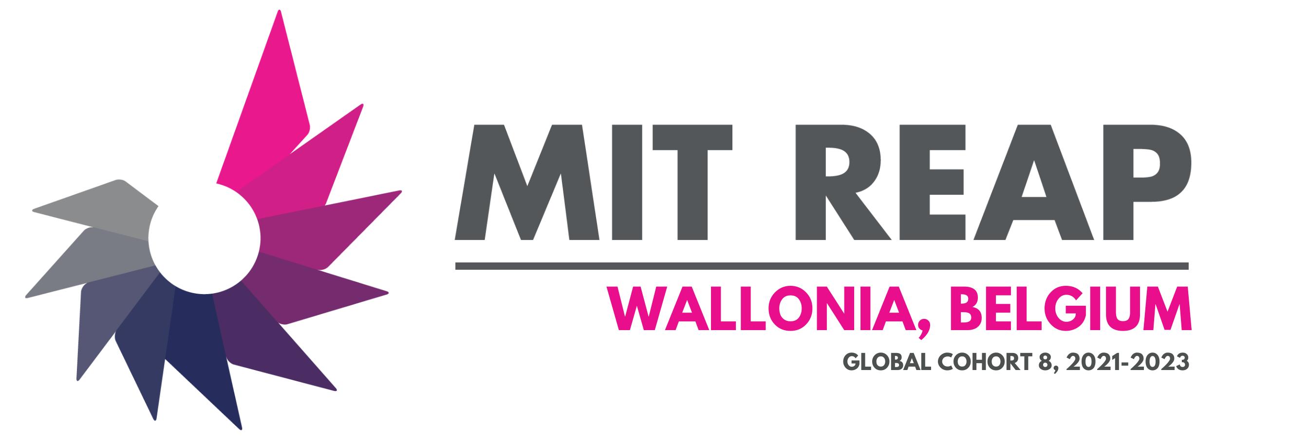 Logo MIT REAP