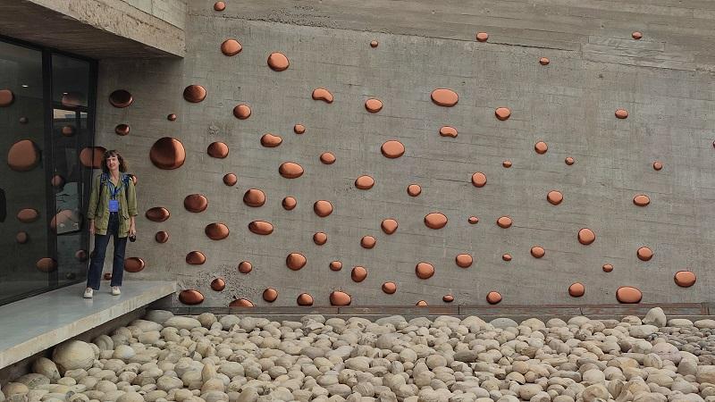 Mushrooms and Mould par Elodie Antoine (c) DGWB Santiago du Chili
