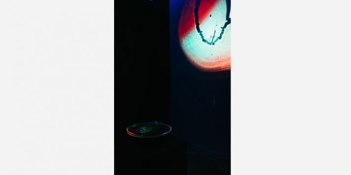 Naziha Mestaoui - 'Sounds of Light' (c) J. Van Belle - WBI