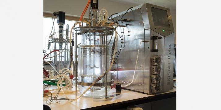 Unité de production chez Delphi Genetics (c)  M.Piersotte