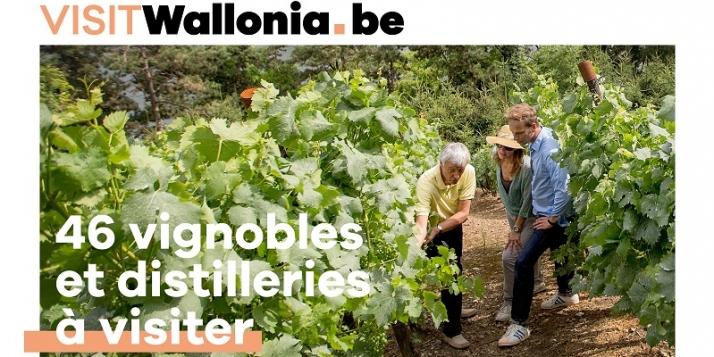 """Carte """"46 vignobles et distilleries à visiter"""""""