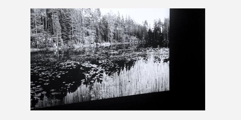 © Hélène Petite, Exposition Horizons, BANG, 2019. Photo : FDR