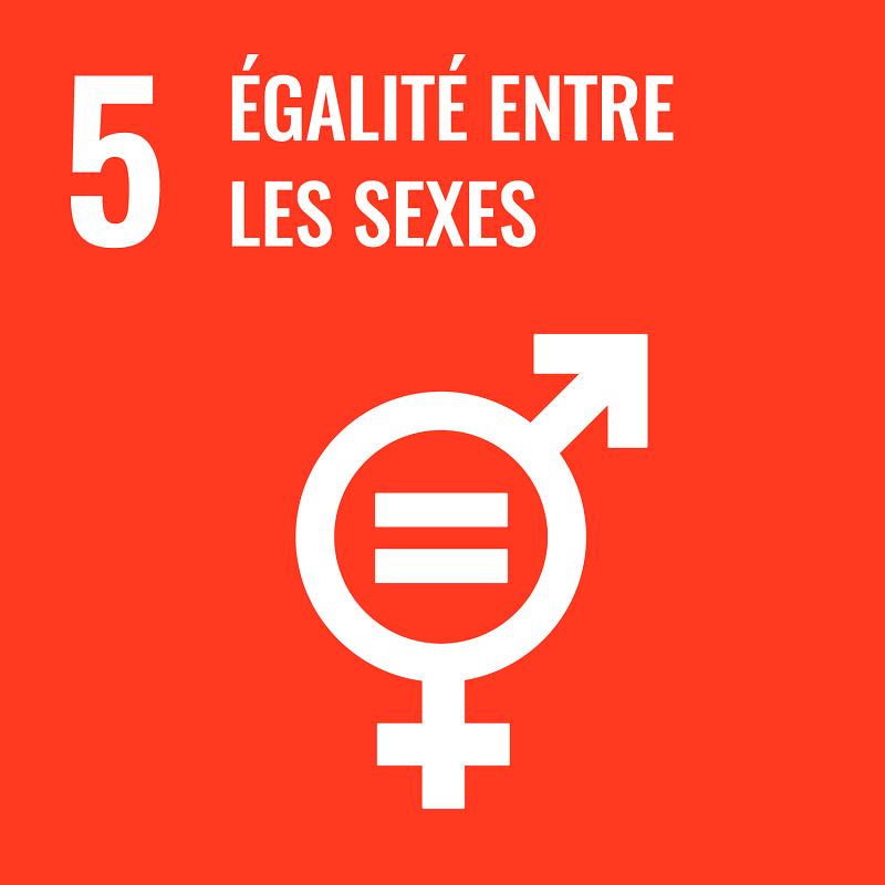 Objectif de Développement Durable 5 (c) ONU