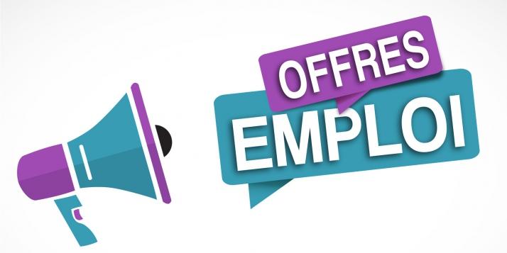 Constitution de réserve pour un emploi de gradué(e) à WBI - cliquer pour agrandir