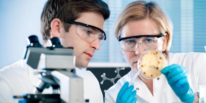 Des chercheurs dans un laboratoire - cliquer pour agrandir